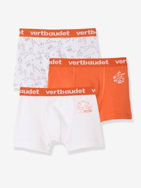 Lot de 3 boxers stretch garçon lot blanc orange